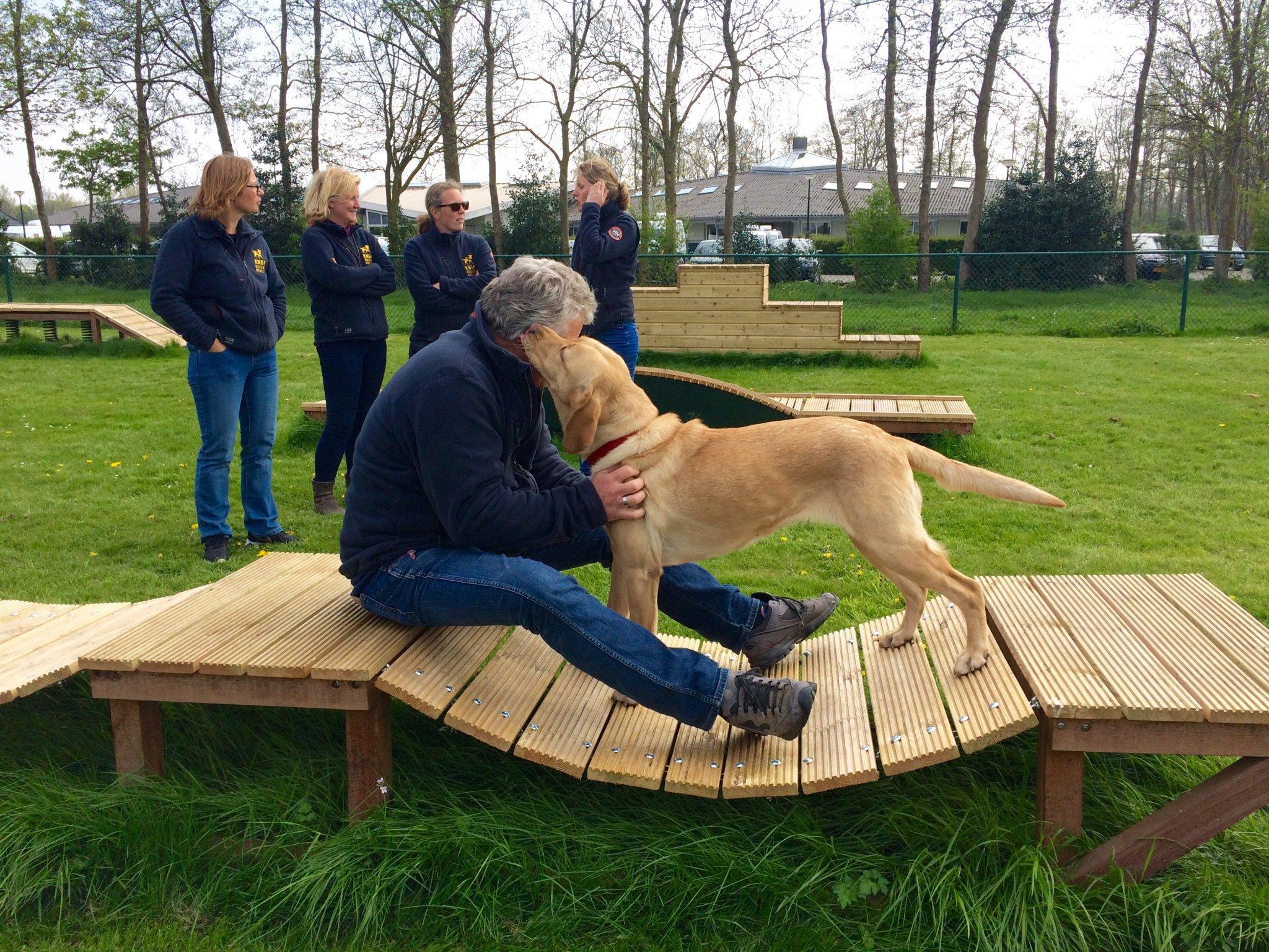 Trainingsstoestellen bij KNGF Geleidehonden